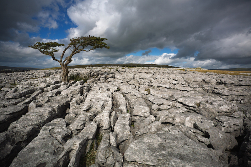 Limestone Ingleborough