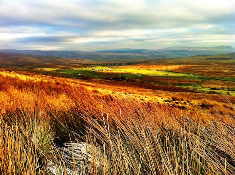 View to Ribblehead
