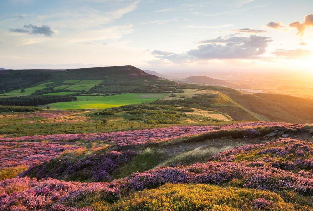 Blakey Ridge – A journey through the heart of the North York Moors National Pak